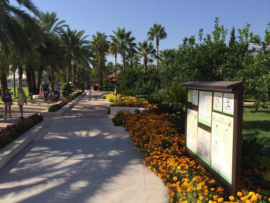 Club Med Palmiye : Resort grounds