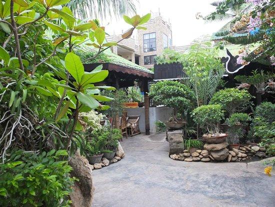 Aquarius Inn: Jardin