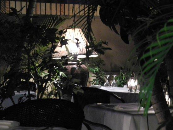 Cafe Matisse : Courtyard Dining