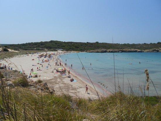 Playa Arenal De Son Saura : spiaggia 3