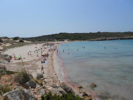 Playa Arenal De Son Saura : spiaggia1