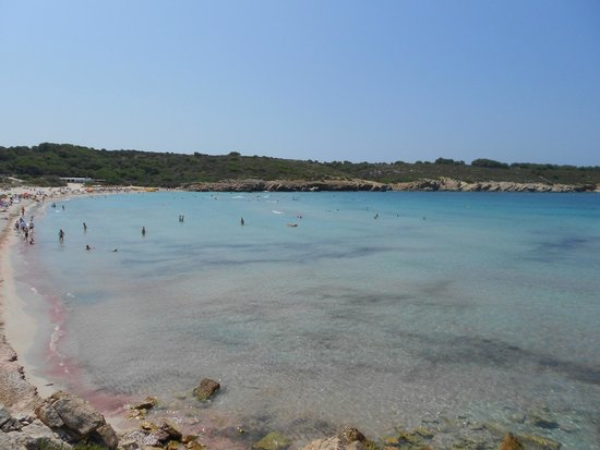 Playa Arenal De Son Saura : spiaggia2