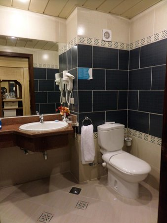 SENTIDO Mamlouk Palace Resort : Our bathroom, always fully stocked with body stuff and always as clean as the day we arrived