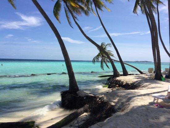 La spiaggia per turisti (108125193)