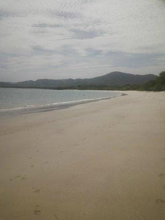 The Westin Golf Resort & Spa, Playa Conchal : Playa COnchal