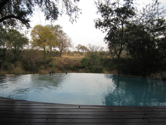 Imbali Safari Lodge : Lobby's view of the water hole