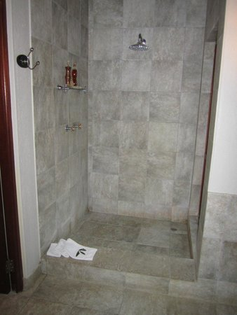 Imbali Safari Lodge : Lovely shower