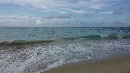 InterContinental San Juan : Beautiful Beach
