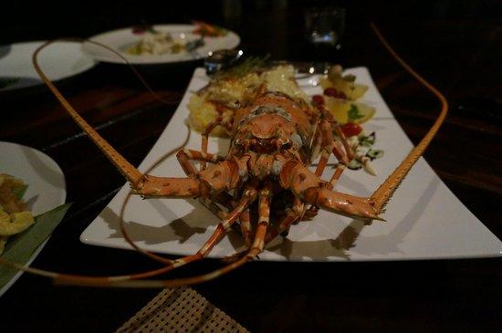 Miskawaan Luxury Beachfront Villas : Lobster!