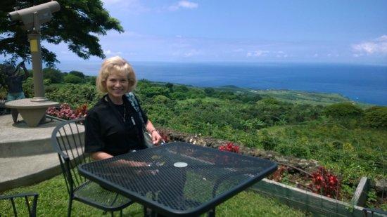 Coffee Plantation Big Island Tripadvisor