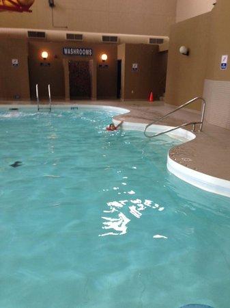Travelodge Hotel Medicine Hat: Pool