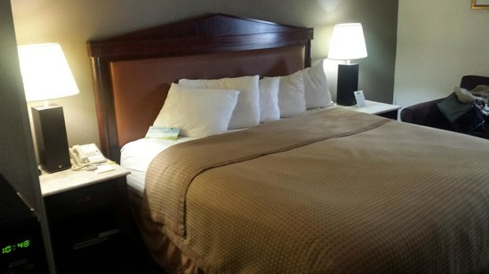 Days Inn Newport News/Oyster Point at City Center: Bed