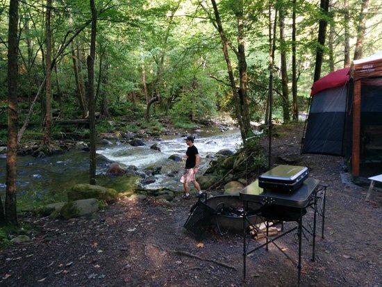 Elkmont Campground Updated 2018 Reviews Gatlinburg Tn