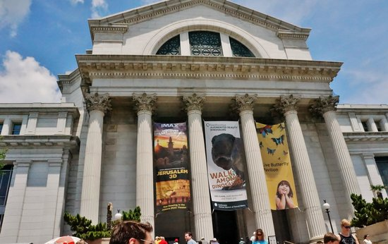 National Museum of Natural History : Beautiful Building