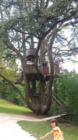 Chateau de Langeais: Tree House