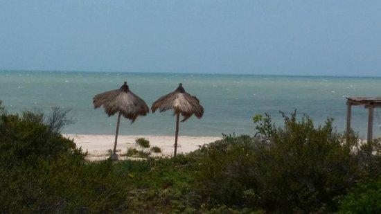 Hotel Xixim: Playa virgen