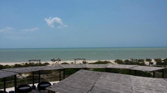 Hotel Xixim: Vista de la playa