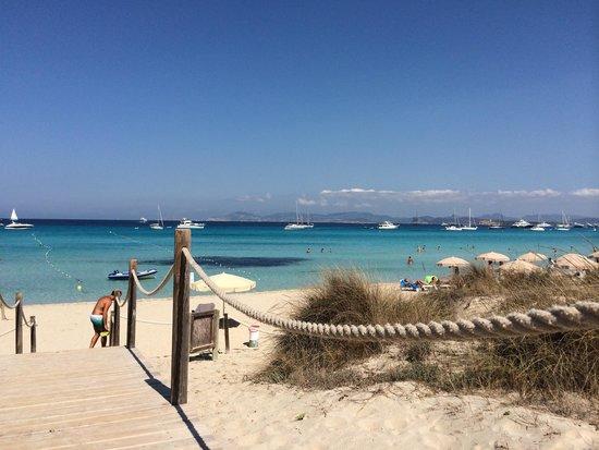 Strand Playa de ses Illetes: Spiaggia da sogno