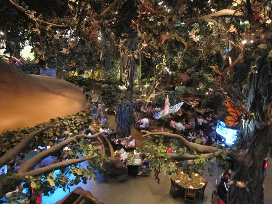 Rain Forest Cafe At Mgm Grand Hotel And Overall View Of The Restaurant