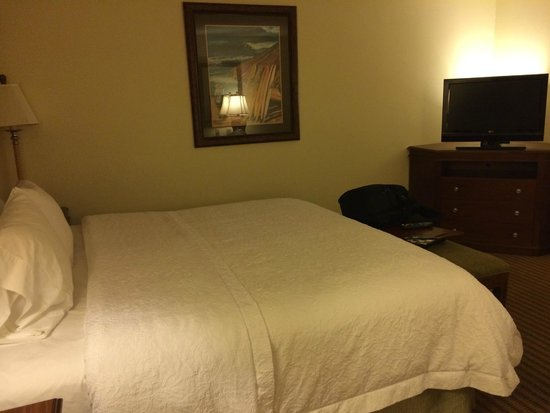 Hampton Inn & Suites Tampa-Wesley Chapel: Bed