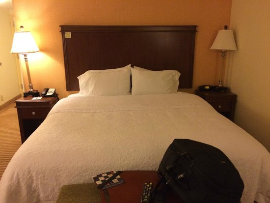 Hampton Inn & Suites Tampa-Wesley Chapel: King Studio
