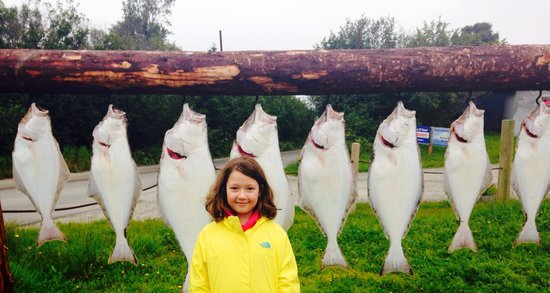 Ninilchik, AK: Halibut fishing with Captain Bob