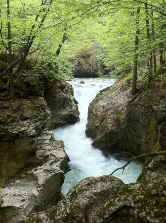 Mostnica Gorge: Belo caminho
