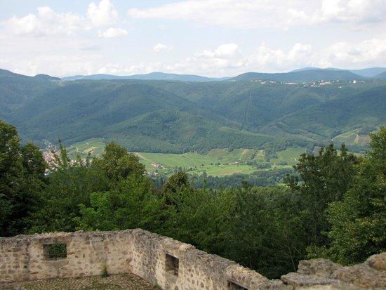 Château du Hohlandsbourg : vue sur la vallée de Munster