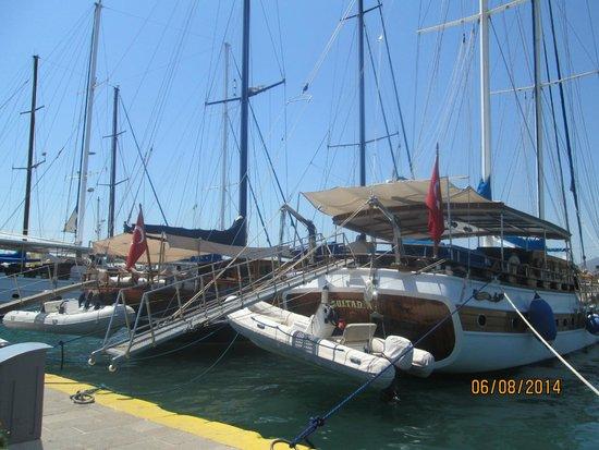 Agar Apartments: Boat trip