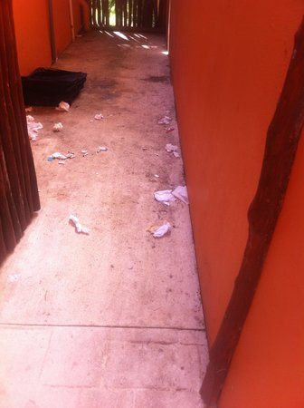 Grand Bahia Principe Tulum : Trash by our room everyday