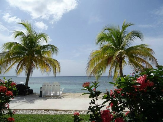 Secrets Wild Orchid Montego Bay: Beautiful grounds