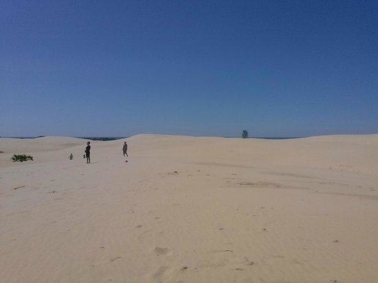 Silver Lake Sand Dunes: You can just barely see lake Michigan in the distance.