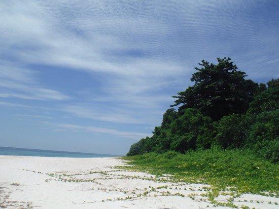 Lankayan Island Dive Resort: Paradise