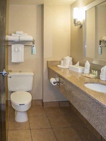 Holiday Inn Sheridan - Convention Center: Bathroom