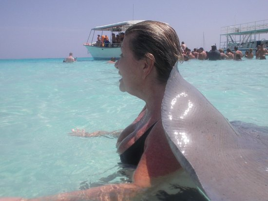 Stingray City: massage