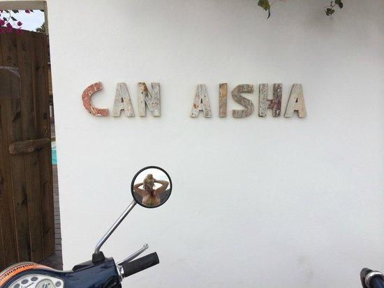 Can Aisha : The Entrance