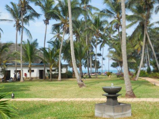 Bluebay Beach Resort and Spa: bar e mar e ao fundo o centro de mergulho e de snorkel
