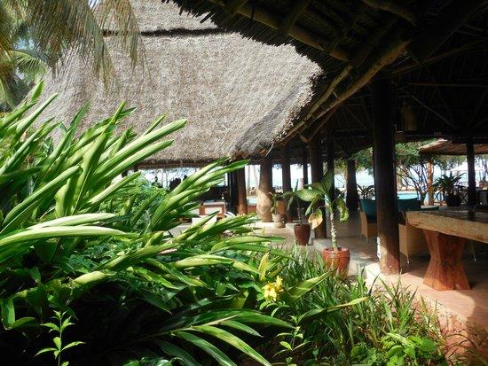 Bluebay Beach Resort and Spa: loundge