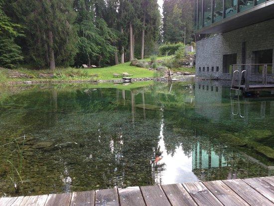 Grand Hotel Waldhaus Flims Alpine Grand Hotel & Spa: Schwimmteich