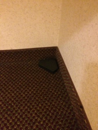 Baymont Inn & Suites Pella: Yep, that's a mouse catching device