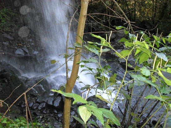 Macuco Safari: O Salto Macuco