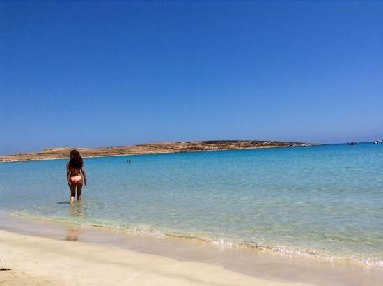 Pori Beach : Acquario