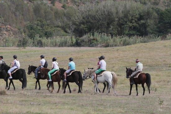 Botlierskop Private Game Reserve: horse ride