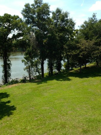 Hopsewee Plantation: View from the front balcony