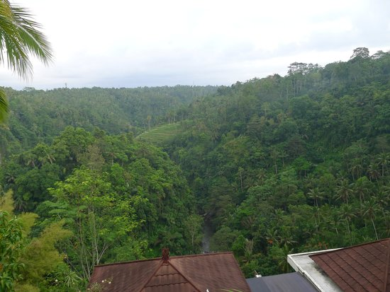 Ayung Resort Ubud: レストランからの眺望