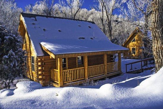 Cabin Rentals in Nathrop, Colorado