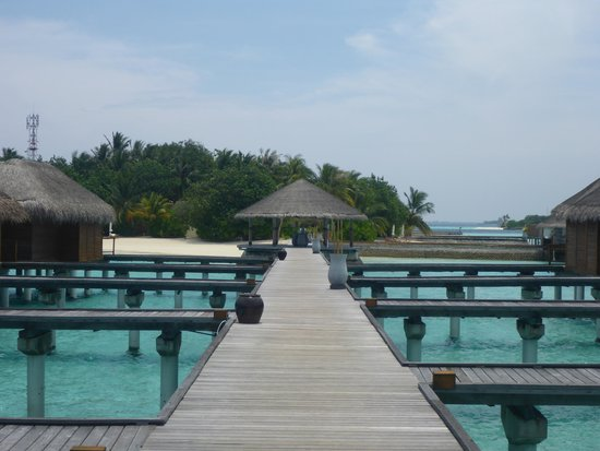Maafushivaru : Watervilla jetty