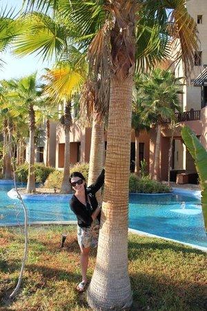 Port Ghalib Resort: ��