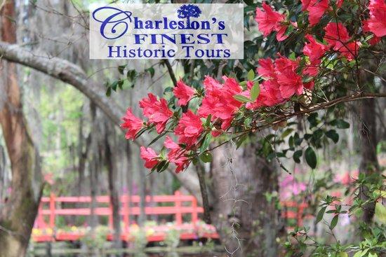 Charleston's Finest Historic Tours: Charleston's Finest