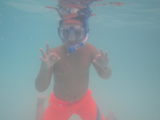 Sunscape Cove Montego Bay: Snorkeling is great!